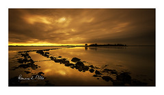 Coffee and Creme (RonnieLMills 5 Million Views. Thank You All :)) Tags: rough island islandhill causeway rocks high tide strangford lough comber newtownards county down northern ireland