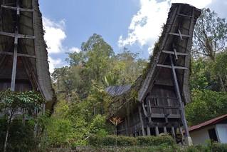 INDONESIEN; SULAWESI, Tanah Toraja , in Lemo,  hist. tongkonans und Reisspeicher , 17625/10634
