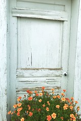 """Renaissance Door"" (bradhodges09) Tags: newmexicophotography newmexico newmexicotrue colorsplash orangeflowers wooddoors entry entrance doorway weathereddoor weathered olddoors doors door"