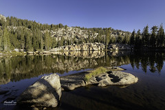 Morming Lake Color (NormFox) Tags: backcountry backpacking california emigrantwilderness forest granite landscape mirror morning mountains mountainside outdoor pine relection rocks rural sierraslake sky trees water goldenhour pinecrest unitedstates us