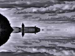 On top Mirrored (Tobymeg) Tags: mirrored mono cloud sky dog people altered images