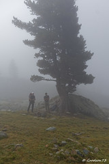 IMG_4721_DxO.jpg (Lumières Alpines) Tags: didier bonfils goodson73 mont viso tour 3841 alpes italie rando alpinisme