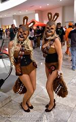 DSC_1649 (slamto) Tags: dcon dragoncon 2018 cosplay atlanta starwars wookie chewbacca bunnyhutch bunny scificonvention comicconvention scifi sciencefiction costume dragoncon2018 dcon2018 fancydress nikond850 dxophotolab