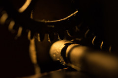 Golden Light at the Cogwheels (Ken Krach Photography) Tags: cogwheel macromonday