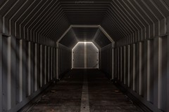 . who do you think you are? (Ruinenstaat) Tags: tumraneedi ruinenstaat lostplace urbex waggon wagon train dark darkness