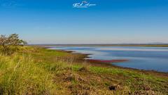 """""""TRANQUILIDADE""""_BRAÇO_DO_LAGO_UREMA_PARQUE_NACIONAL_GORONGOSA_SOFALA_MOÇAMBIQUE (paulomarquesfotografia) Tags: paulo marques sony a230 sal 1855mm lago urema lake landscape paisaem planicie céu sky arvore tree parque nacional gorongosa sofala moçambique mozambique national park"""