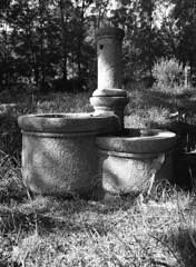 (analogicmoment) Tags: 120film mediumformat blackandwhite bw kodaktrix400 homedeveloped kodakhc110b mamiya6451000s sekorc45mmf28n nature ishootfilm buyfilmnotmegapixels filmisnotdead 6x45cm