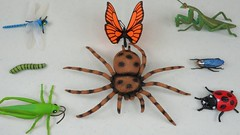 Bug Names For Kids Insects Toys Collection Learn Colors For Children (Hoàng Đồng) Tags: bug bugnames bugnamesforkids bugs forkids insect insects insectstoys kid kids learn learncolors learningb playtime4kidz toyscollection