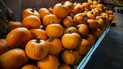 season of pumpkins🎃 (sugarelf) Tags: pumpkins september season autumn pacificnorthwest night pumpkinseason atthegrocerystore supermarket photography