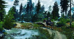 """""""May the forest be with you."""" (Xenolith3D) Tags: witcher 3 wild hunt geralt geraltofrivia roach screenshot 4k panorama nvidiaansel nvidia virtualphotography forest skellige cd projekt red redengine"""