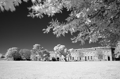 The end of summer at Fort Warren (ewan.osullivan) Tags: bw ir island tree tripod bostonharborislands blackandwhite monochrome fortwarren fortification georgesisland bostonmetropolitanparks