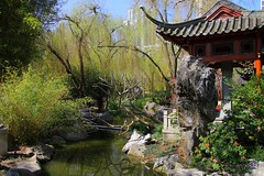 Chinese Garden Of Friendship, Darling Harbour, Sydney, September 15th 2014 (Southsea_Matt) Tags: australia newsouthwales september 2014 spring canon 60d darlingharbour chinesegardenoffriendship