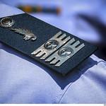 Platina do quadro de oficiais de Intendência thumbnail