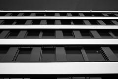 Fading lines (iamunclefester) Tags: münchen munich monochrome blackandwhite lines fading black white