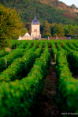 Eglise dans les vignes (jpto_55) Tags: eglise chambollemusigny vigne côtedor bourgogne france xe1 fuji fujifilm fujixf55200mmf3548rlmois