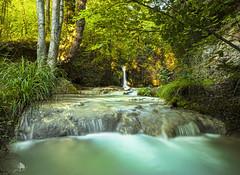 Ruta del agua de Berganzo II (Jose Peral Merino) Tags: rutadelaguadeberganzo rutadelagua berganzo agua río corriente cascada bosque inglares alava natura naturaleza led largaexposicióndiurna hdr