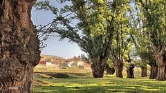 20180901_103311_qhdr (XimoPons : vistas 4.500.000 views) Tags: ximopons aragon spain teruel paisaje landscape galve