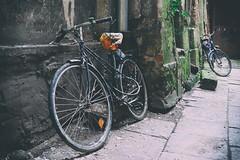 (Kornelson) Tags: bike bikes cracow krakow kraków poland aold oldtown fuji fujifilm fufinon xt1 xf18135