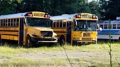 Alachua District Schools (abear320) Tags: school bus alachua district schools gainesville florida ic ce fe international