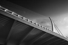 Puente del Grao, Valencia (jantoniojess) Tags: valencia ciudaddelasartesylascienciasvalencia españa spain puentedelgrao puenteassutdel´or puentedeserrería mástil puentedelarpa ríoturia eljamonero blancoynegro blackandwhite monocromático monochrome nikond5200 nikon bridge perspectiva perspective arquitectura architecture líneas geometría