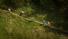 Dream Trail Race 2018 (Steve Samosa Photography) Tags: running dream race sthelens suttonmanor boldforestpark aerial aerialview aerialphotography aerialshot dronecamera drone droneshot droneview