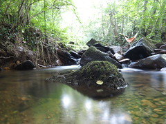 What a place for the hammock (DaveKav) Tags: river stream water rocks hammock camping sleeping trees woods tranquil peaceful resting relaxing coldibardin beautiful countryside holiday relax paysbasque stone