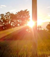 2018-09-11_12-08-21 (lillypotpie) Tags: prairie prairiegrasses oklahoma backroads sun glare burst fencepost trees electricpole