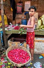 "Calcutta (toshu2011) Tags: india indien hindu hinduism gandhi hindi kolkata calcutta kalkutta west bengal bengali bengalen port city ganges hooghly river ganga megacity ""city joy"" cultural ""east company"" colonial era architecture mullick ghat flower market"