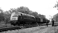 Just watching (Duck 1966) Tags: d832 onslaught buryhydraulicgroup gcr emrps timelineevents diesel locomotive