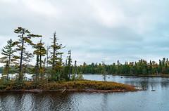 Autumn at Esther Lake Campground, Minnesota (Tony Webster) Tags: estherlake grandportagestateforest minnesota autumn bog fall fallcolors island lake stateforest trees