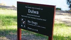 Dulwa Dool-wah Ngunnawal for casuarina trees (spelio) Tags: act canberra australia