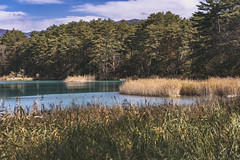 DSC_0237 (juor2) Tags: d750 nikon scene travel japan fukushima aizuwakamatsu lake pond maple autumn scenery volcano colorful