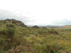 DSCN5718 (norwin_galdiar) Tags: bretagne brittany breizh finistere monts darrée nature landscape paysage