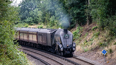 60009 Wokingham 21 August 2018 (3) (BaggieWeave) Tags: berkshire wokingham lswr lner a4 pacific 462 60009 unionofsouthafrica steamengine steamlocomotive steamtrain steam cathedralsexpress