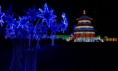 Lights of the North (Kim's Pics :)) Tags: lightsofthenorth millionsoflights led colorful chinese culture temple blue trees shining bright display beautiful night event lanternfestival redriverexhibitionpark winnipeg manitoba exposition magical artwork canada