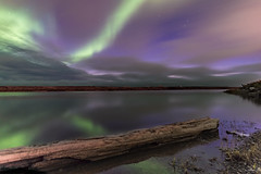 Northern lights with a sunset (Chriskellyphotography) Tags: northernlights auroraborealis aurora tuktoyaktuk sunset landscape driftwood