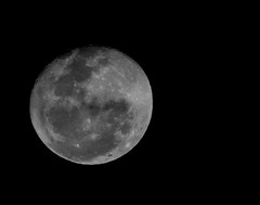 August Full Moon (|Sarah|) Tags: astro astrology australia canon1200d dusk fullmoon moon photography planet southaustralia space zoomlens