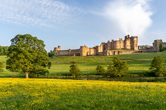 Alnwick Castle (Matthew_Hartley) Tags: alnwick castle river aln evening golden goldenhour northumberland uk britain coast sony a7 iii a7iii fullframe 2870 2870mm