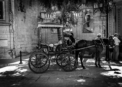 A horse and his carriage (Emanuele.N) Tags: baroquestyle islandofmalta walkingthestreets architecture capital carriage cityofsilence district history horse malta mdina observing summer