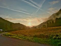 Sunrise in the mountains near Oberaudorf, Bavaria, Germany (UweBKK (α 77 on )) Tags: sunrise sun morning sky blue yellow fields trees forest mountains road mist clouds oberaudorf kiefersfelden breitenau bavaria bayern germany deutschland europa europe iphone