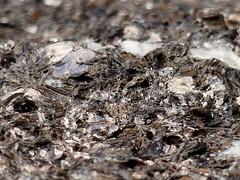 MacroMondays Rock (BrigitteE1) Tags: macromondays rock phlogopit biotitdunkler glimmer feldspat orthoklas albit grönland greenland biotitedark mica phlogopite feldspar orthoclase nordostgrönland northeastgreenland macro makro struktur texture monday hmm textur farben colors white brown blue textures unique