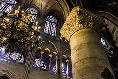 París - Notre Dame (Jc Castellanos) Tags: parís notre dame catedral iglesia cathedral catedralparis