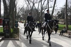 Horse Guards (lazy south's travels) Tags: istanbul turkey turkish man horse mounted uniform guard topkapi palace patrol military
