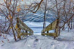 Winter is coming (stephaneblaisphoto) Tags: stairs bare tree beauty nature branch cold temperature covering day extreme weather field frozen land no people outdoors plant river scenics snow snowcapped mountain tranquil scene tranquility white color winter