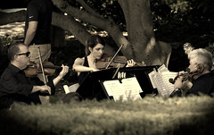 Musicians, Cantigny Park. (EOS) (Mega-Magpie) Tags: canon eos 60d outdoors people musicians person violin classical music cantigny park wheaton dupage il illinois usa america lady woman gal man dude fella tree