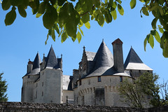 Le Coudray-Montpensier # 2 (Les 3 couleurs) Tags: valdeloire châteaux castle touraine indreetloire lecoudraymontpensier renaissance paysdelaloire