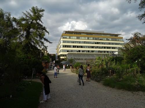 Wien, 3. Bezirk (historic gardens in the suburbs of Vienna), Botanischer Garten, Giardino botanico, Jardín botánico, Jardin botanique, botanical garden, Ogród botaniczn (Rennweg/Landstraßer Gürtel), in the background, Austria Trend Hotel Savoyen Vienna