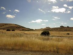 IMG_1875ed (floripic) Tags: landscape road sky california