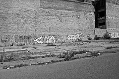 Lord Line area views Monochrome (brianarchie65) Tags: lordlinebuilding trash litter rubbish dereliction derelict lapollution blackandwhite blackandwhitephotos blackandwhitephoto blackandwhitephotography blackwhite123 blackwhiterealms monochrome flickrunofficial flickr flickruk flickrcentral flickrinternational ukflickr canoneos600d geotagged brianarchie65 yorkshirecameraramblers yorkshireblackandwhite kingstonuponhull hull cityofculture