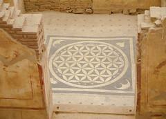 Mosaic floor (Adaptabilly) Tags: ancient floor roman mosaic symbols iphotooriginal wall ephesus turkey lumixg1 graphics efes travel ephesos door izmir tr greek asia